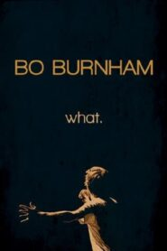 Bo Burnham: What. Online Lektor PL FULL HD