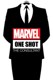 Marvel One-Shot: Konsultant Online Lektor PL FULL HD