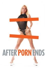 After Porn Ends Online Lektor PL FULL HD