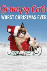 Grumpy Cat's Worst Christmas Ever Online Lektor PL FULL HD