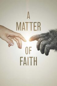 A Matter of Faith Online Lektor PL FULL HD