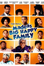 Madea's Big Happy Family Online Lektor PL FULL HD
