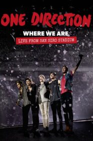 One Direction: Where We Are – The Concert Film Online Lektor PL FULL HD