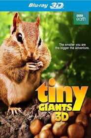 Tiny Giants 3D Online Lektor PL FULL HD