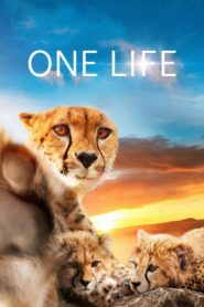 One Life Online Lektor PL FULL HD
